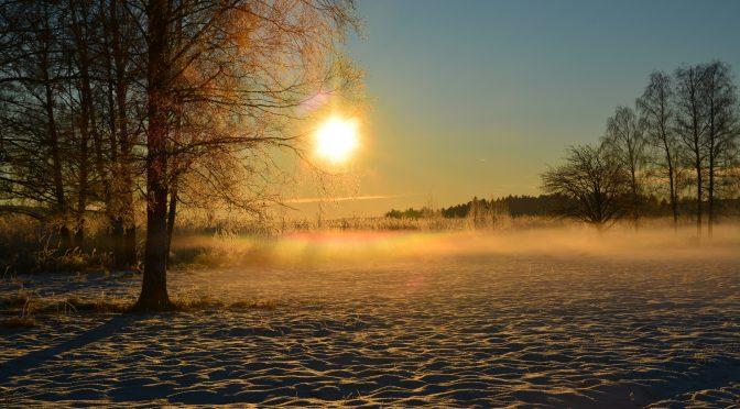 Solnedgång i vinterlandskap